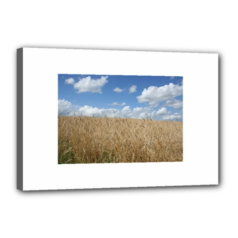 Grain and Sky Canvas 18  x 12  (Framed)