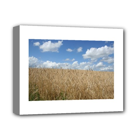 Grain and Sky Deluxe Canvas 14  x 11  (Framed)