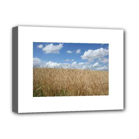 Grain and Sky Deluxe Canvas 16  x 12  (Framed)