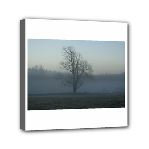 Foggy Tree Mini Canvas 6  x 6  (Framed)
