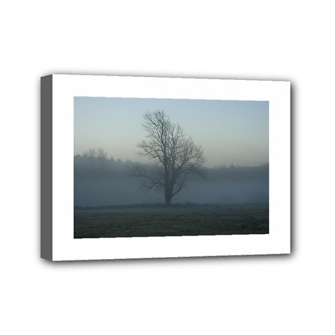 Foggy Tree Mini Canvas 7  X 5  (framed)