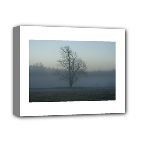 Foggy Tree Deluxe Canvas 14  x 11  (Framed)