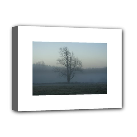 Foggy Tree Deluxe Canvas 16  x 12  (Framed)