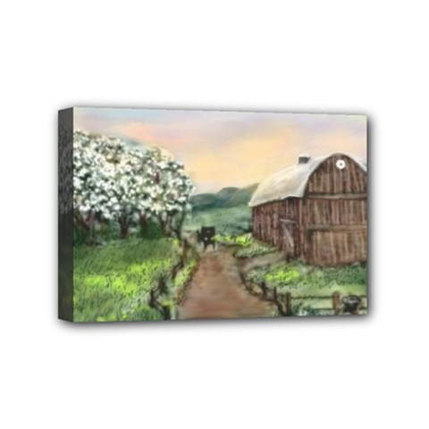 Amish Apple Blossoms  by Ave Hurley of ArtRevu ~ Mini Canvas 6  x 4  (Stretched)