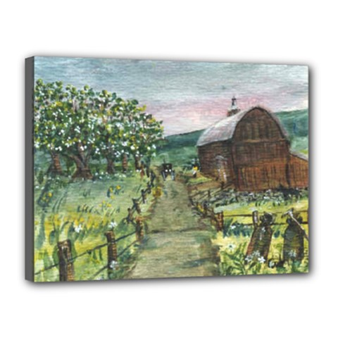 Amish Apple Blossoms  by Ave Hurley of ArtRevu ~ Canvas 16  x 12  (Stretched)