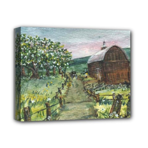 amish Apple Blossoms  By Ave Hurley Of Artrevu   Deluxe Canvas 14  X 11  (stretched)