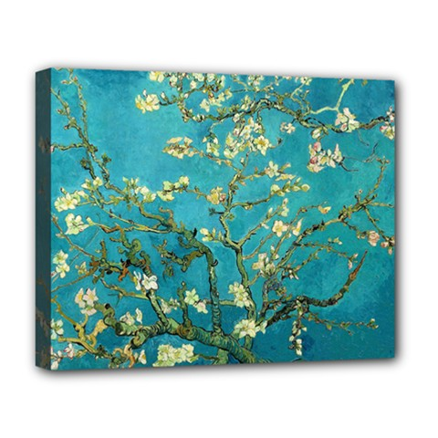 Vincent Van Gogh Blossoming Almond Tree Deluxe Canvas 20  x 16  (Framed)