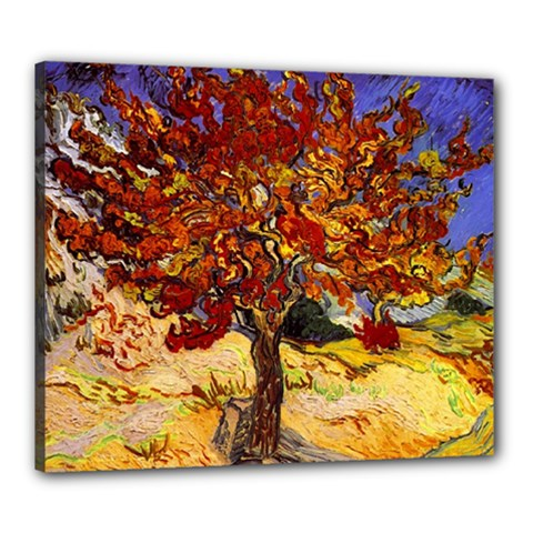 Vincent Van Gogh Mulberry Tree Canvas 24  x 20  (Framed)