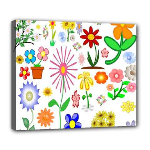 Summer Florals Deluxe Canvas 24  x 20  (Framed)