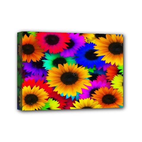 Colorful Sunflowers Mini Canvas 7  x 5  (Framed)