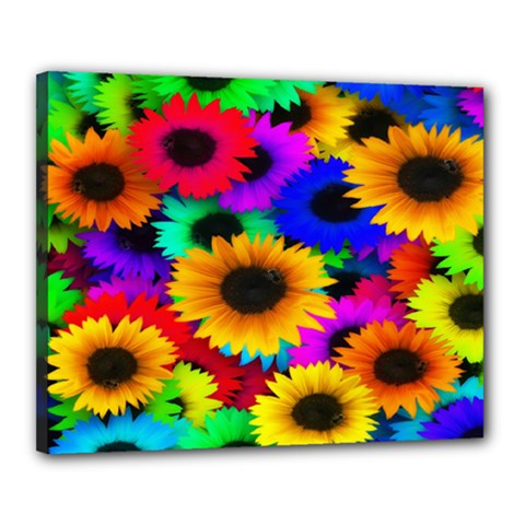 Colorful Sunflowers Canvas 20  x 16  (Framed)
