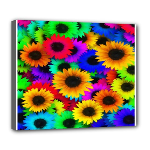 Colorful Sunflowers Deluxe Canvas 24  X 20  (framed)