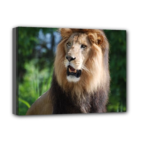 Regal Lion Deluxe Canvas 16  x 12  (Framed)