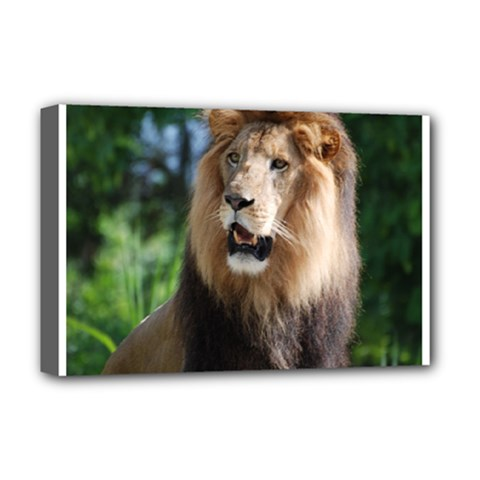 Regal Lion Deluxe Canvas 18  X 12  (framed)