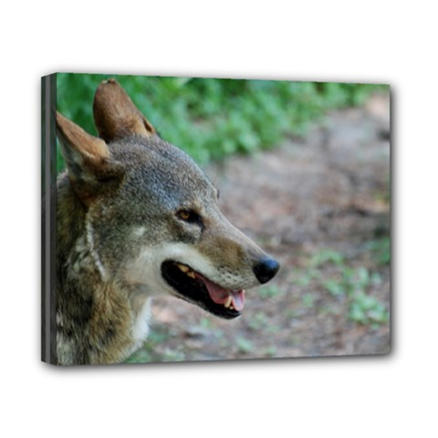 Red Wolf Canvas 10  x 8  (Framed)