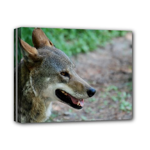 Red Wolf Deluxe Canvas 14  x 11  (Framed)