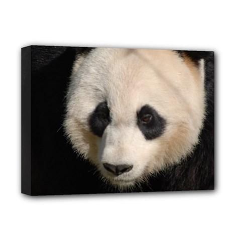 Adorable Panda Deluxe Canvas 16  x 12  (Framed)