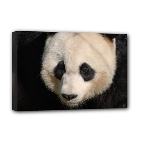 Adorable Panda Deluxe Canvas 18  x 12  (Framed)