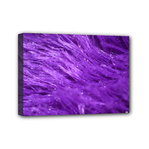 Purple Tresses Mini Canvas 7  X 5  (framed)
