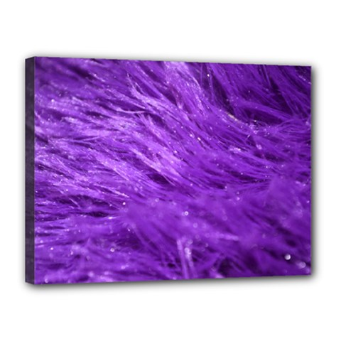 Purple Tresses Canvas 16  x 12  (Framed)