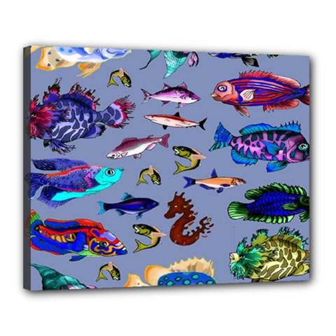 Fishy Canvas 20  x 16  (Framed)