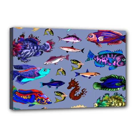 Fishy Canvas 18  x 12  (Framed)