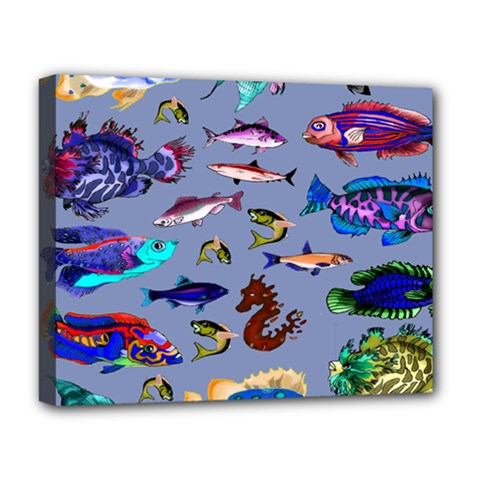Fishy Deluxe Canvas 20  x 16  (Framed)