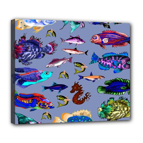 Fishy Deluxe Canvas 24  x 20  (Framed)