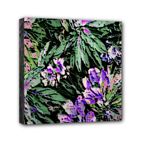 Garden Greens Mini Canvas 6  x 6  (Framed)