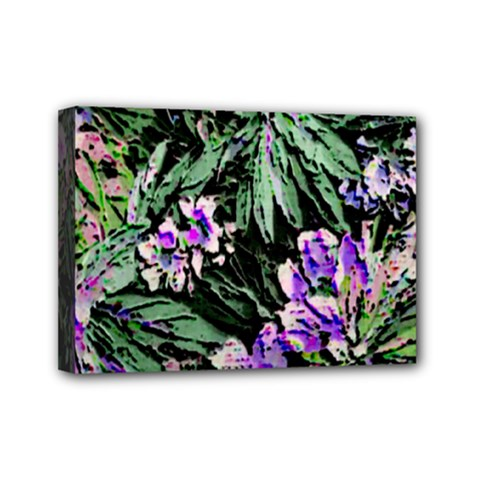 Garden Greens Mini Canvas 7  x 5  (Framed)