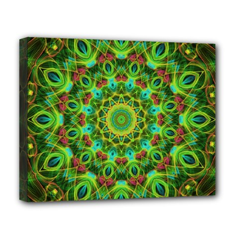 Peacock Feathers Mandala Deluxe Canvas 20  x 16  (Framed)
