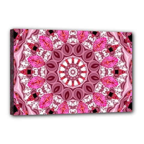 Twirling Pink, Abstract Candy Lace Jewels Mandala  Canvas 18  x 12  (Framed)