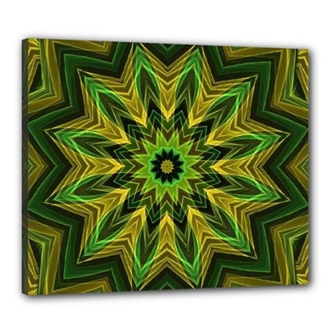 Woven Jungle Leaves Mandala Canvas 24  X 20  (framed)