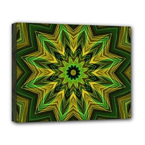 Woven Jungle Leaves Mandala Deluxe Canvas 20  x 16  (Framed)