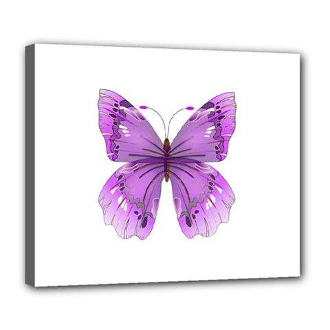 Purple Awareness Butterfly Deluxe Canvas 24  x 20  (Framed)