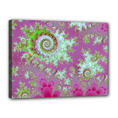 Raspberry Lime Surprise, Abstract Sea Garden  Canvas 16  x 12  (Framed)