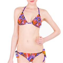 Crystal Star Dance, Abstract Purple Orange Bikini