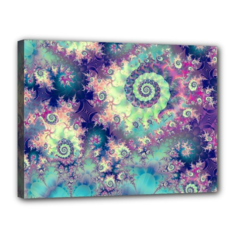 Violet Teal Sea Shells, Abstract Underwater Forest Canvas 16  x 12  (Stretched)