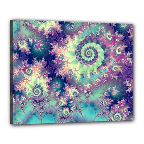Violet Teal Sea Shells, Abstract Underwater Forest Canvas 20  x 16  (Stretched)