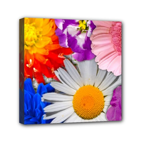Lovely Flowers, Blue Mini Canvas 6  x 6  (Framed)