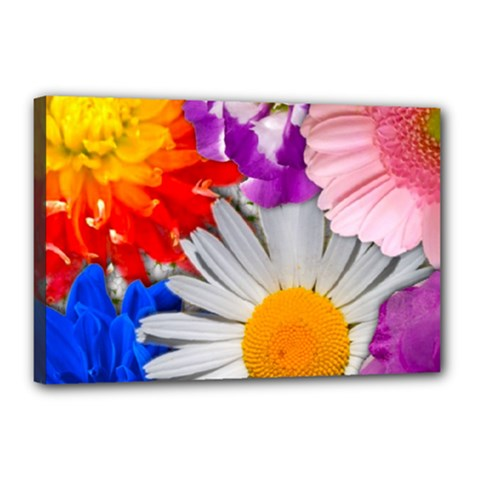Lovely Flowers, Blue Canvas 18  x 12  (Framed)