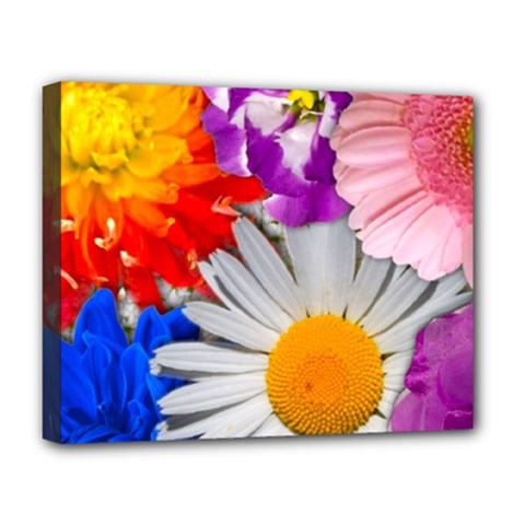 Lovely Flowers, Blue Deluxe Canvas 20  x 16  (Framed)