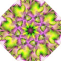 Raspberry Lime Mystical Magical Lake, Abstract  Hook Handle Umbrella (Large)