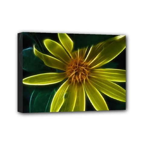 Yellow Wildflower Abstract Mini Canvas 7  x 5  (Framed)