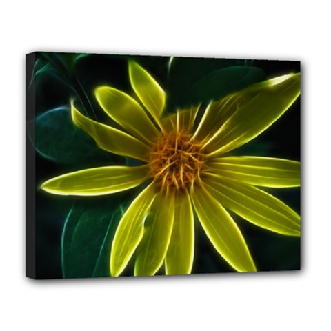 Yellow Wildflower Abstract Canvas 14  X 11  (framed)