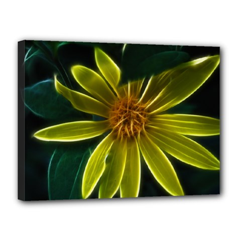 Yellow Wildflower Abstract Canvas 16  x 12  (Framed)