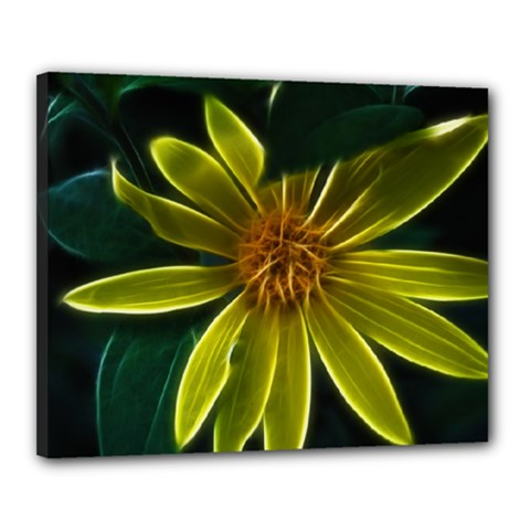 Yellow Wildflower Abstract Canvas 20  X 16  (framed)