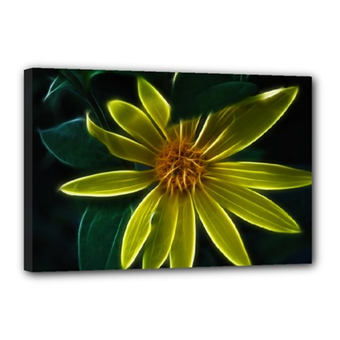 Yellow Wildflower Abstract Canvas 18  x 12  (Framed)