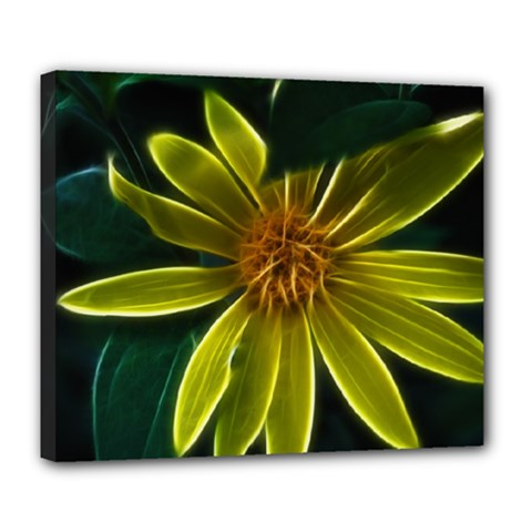 Yellow Wildflower Abstract Deluxe Canvas 24  x 20  (Framed)