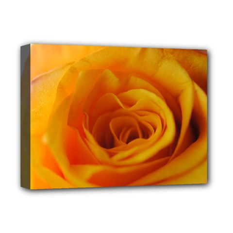 Yellow Rose Close Up Deluxe Canvas 16  x 12  (Framed)
